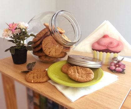 μπισκότα με φυστικοβούτυρο γενική